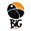 Big Radio 2 BL